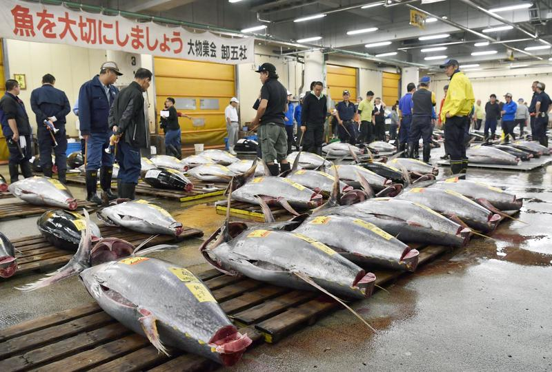 Tokyo's famed Tsukiji fish market holds last auction before move