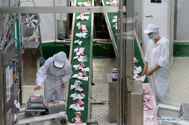 China published a white paper on employment, labor rights in Xinjiang