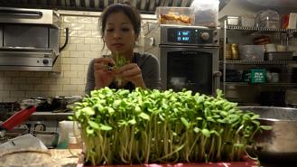 Peggy Chan is on a mission to raise awareness of the personal and environmental perks of a plant-based diet. An authority on sustainable food, she is taking bold steps to change the culinary scene in Hong Kong.