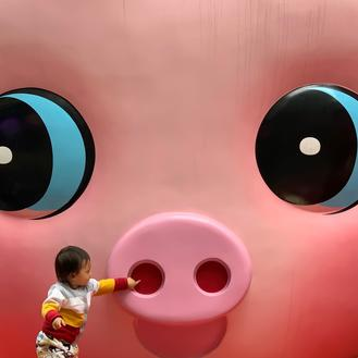 A toddler pokes a finger at a pig installation outside a shopping mall in Tsim Sha Tsui. Its pinkish chubby face and round sparkling eyes are very endearing to kids and Instagrammable.
