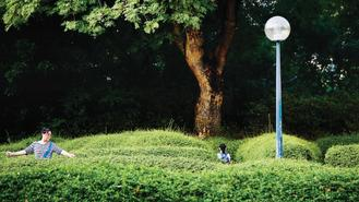 A woman was pictured exercising among the shrubbery at Kowloon Park.