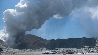 A New Zealand volcanic island erupted Monday in a tower of ash and steam while dozens of tourists were exploring the moon-like surface, killing at least five people and leaving many more missing.
