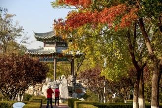 The Beijing Gardening and Greening Bureau recently published a list of 19 parks and scenery sites that are good choices for enjoying the autumn colors.