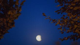 New moon phase brings grace and tranquility to China's nighttime.