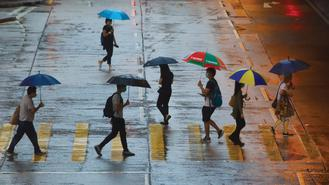 Residents holding umbrellas were photographed crossing a zebra crossing in Mong Kok on a wet day.