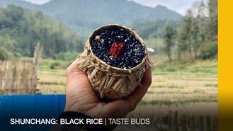 Colored rice is better than no rice. Joyce forgets Nat is vegetarian. 