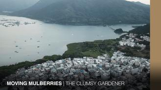 The Gardener has a space issue. So he's packing his mulberry and durian, and heading to a fellow gardener's village in the eastern New Territories of Hong Kong.